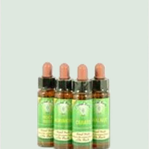 Vervain - Bach Flower Remedies 10ml