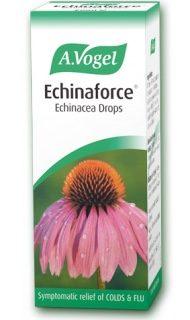 Echinacea tincture 100ml